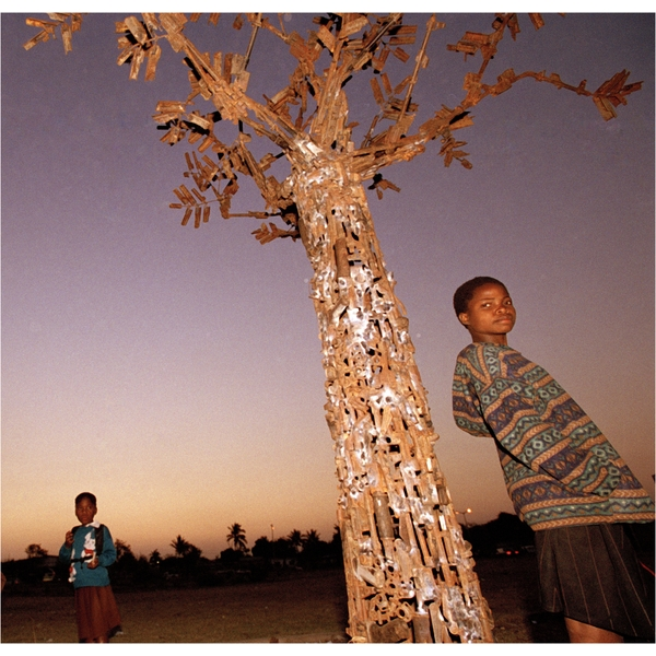 Tree of life - Mozambique