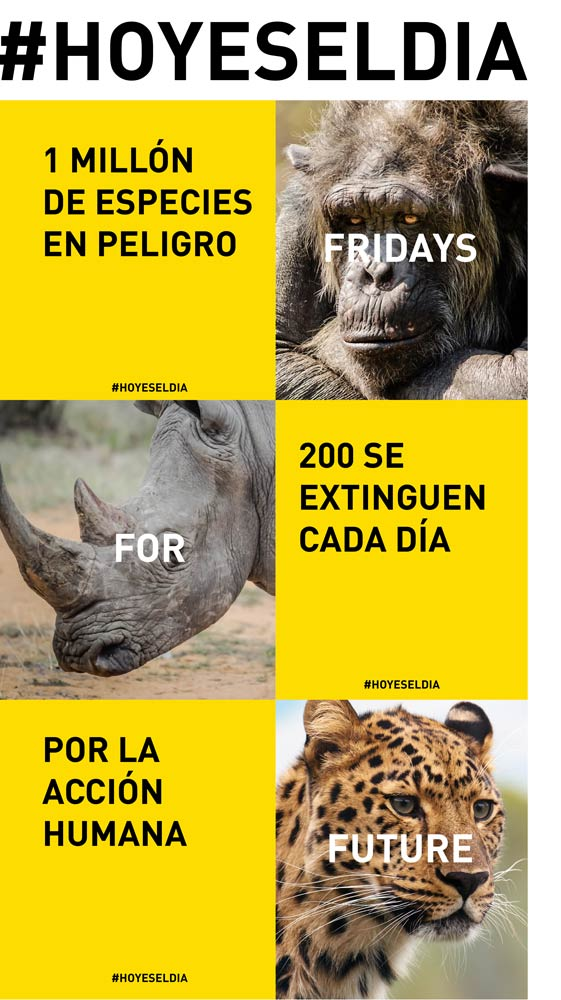 FridaysForFuture-Hoyeseldia-Extincion